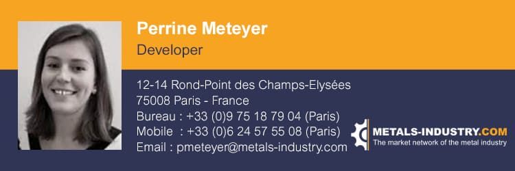 Perrine Meteyer – Developer